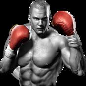 Real Boxing™