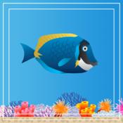 Swishy Fish