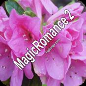 MagicRomance2