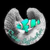 ColorSplasher2