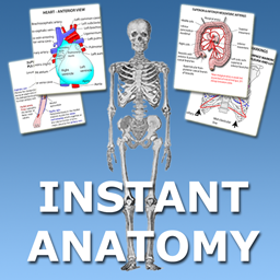 Instant Anatomy