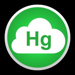 Simple Hg Server