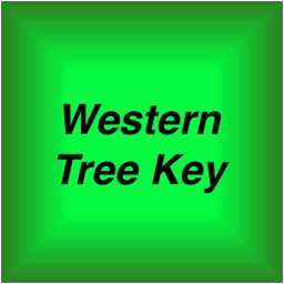 Western Tree Key