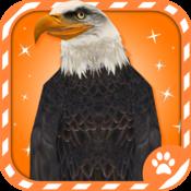 Virtual Pet Eagle