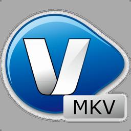 MKV Video Converter