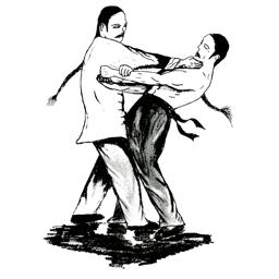 Wing Chun Techniques