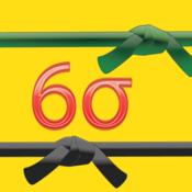 Six Sigma Exam Prep Bundle: Green and Black Belts