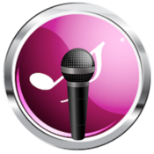 All Audio Recorder Pro Lite