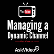 Course for Managing a Dynamic YouTube Channel