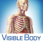 Visible Body 3D Human Anatomy Atlas