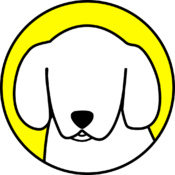 Snappy - Snapchat`s Best Friend