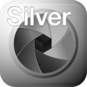 SILVER projects professional