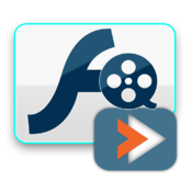 VMeisoft Flash to Video Converter