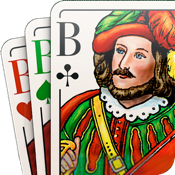 SKAT 9.1 play cards