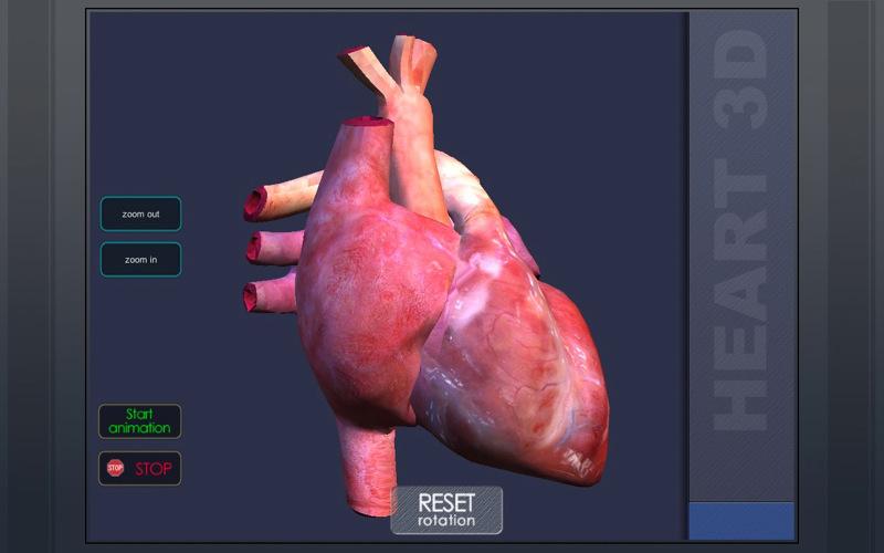 3DHeart 1.0