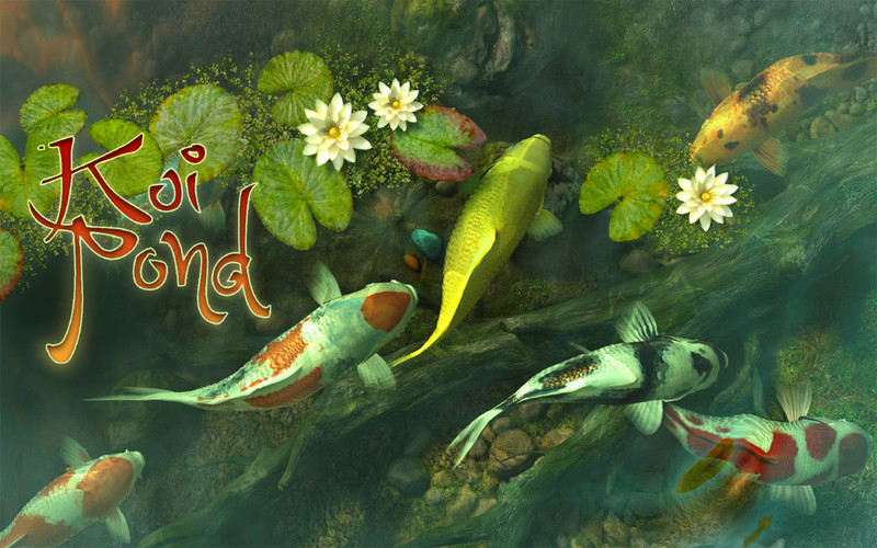 Koi pond 3d download app mac triadio for Koi pond app