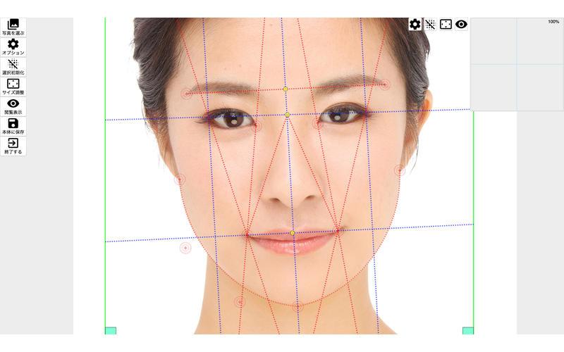 Face Points Lite